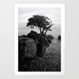 Seascape Taboga Art Print