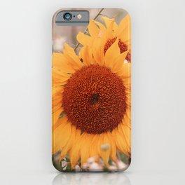 4 sunflowers nostalgia iPhone Case