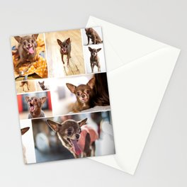 Chloe Obsession Stationery Cards