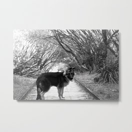 Please Come for a Walk with Me Metal Print