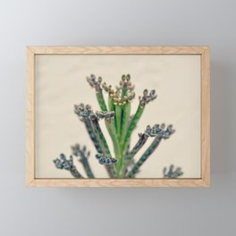 There is a gift finer than any artist found in theses hues and curves  Framed Mini Art Print