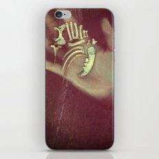 skinandbone iPhone & iPod Skin
