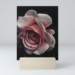 Medusa rose Mini Art Print