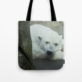 Missing the North Tote Bag