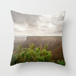 Desert bluff and sage Throw Pillow