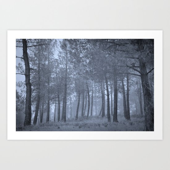 the forest attracts me to get inside Art Print