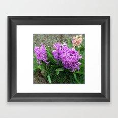 Springtime is here Framed Art Print