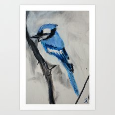 Blue Jay Wild Bird Acrylic Painting Art Print