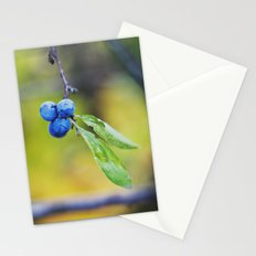 autumn fruit. Stationery Cards