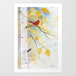 Cardinal on birch Tree Art Print
