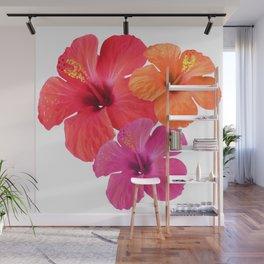 Red Orange Pink Hibiscus Wall Mural