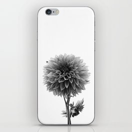 Dahlia - Monochrome iPhone Skin