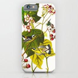 Black and Yellow Warbler Bird iPhone Case