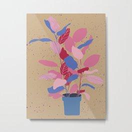 Fig Plant - Pinky Beige Metal Print
