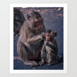 Mother and Baby Macaque Monkey Art Print