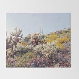 Arizona Color Throw Blanket