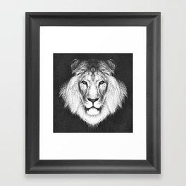 LION 5 Framed Art Print