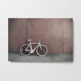 Fixed Metal Print