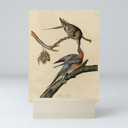 62 Passenger Pigeon17 Mini Art Print