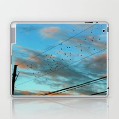 Migration Laptop & iPad Skin