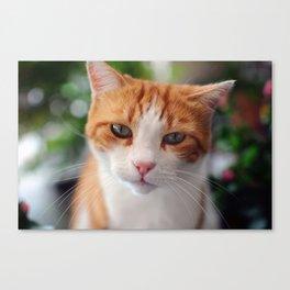 Garfield - a red cat Canvas Print