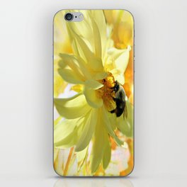 Busy Bumble Bee iPhone Skin