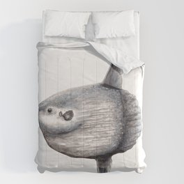 Ocean Sunfish (Mola mola) Comforters
