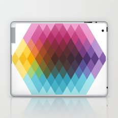 Fig. 022 Laptop & iPad Skin