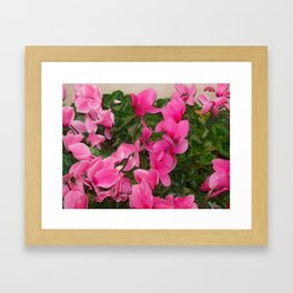 Flowers Hanging Out With leaves Framed Art Print