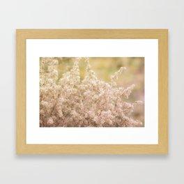 Romantic  Desert Broom Framed Art Print