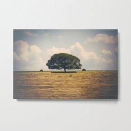 A Texas Landscape Metal Print