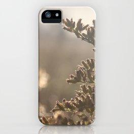 Summer Grass iPhone Case