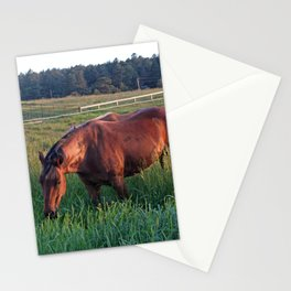 An Evening Chance Stationery Cards
