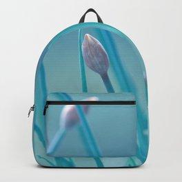 Allium turquoise 95 Backpack