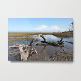 Driftwood, Quiet morning by the Sea Metal Print