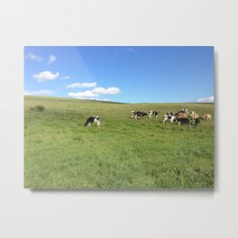 Connecticut Farmscape Metal Print