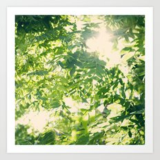 Let the Sun Shine... Art Print