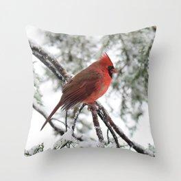 Wet Snow Cardinal (vertical) Throw Pillow