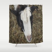 goat Shower Curtains featuring Goat by JCalls Photography