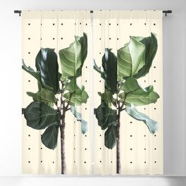 Home Ficus Blackout Curtain