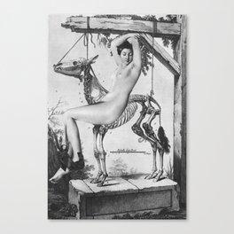 Belle au squelette Canvas Print