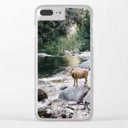 goat creek Clear iPhone Case
