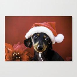 Christmas Dachshund Puppy Wearing a Santa Hat with Poinsettias Canvas Print