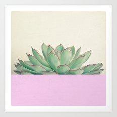 Succulent Dip Art Print