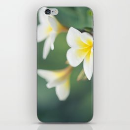 in the happy garden iPhone Skin