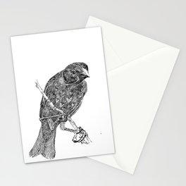 Lovely Bird Stationery Cards
