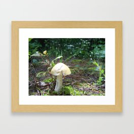 Fairy House Framed Art Print