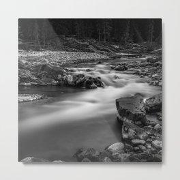River line Metal Print