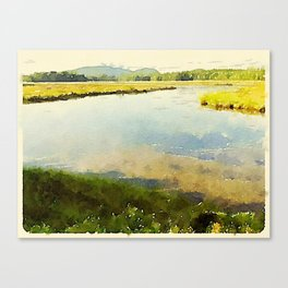Salt Grass Marsh Canvas Print