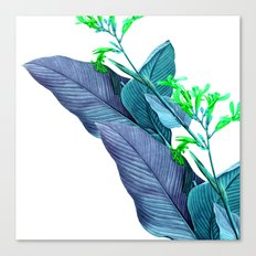 Leaf feathers Canvas Print